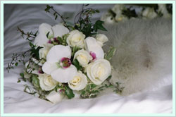 Matthew Spriggs Florist